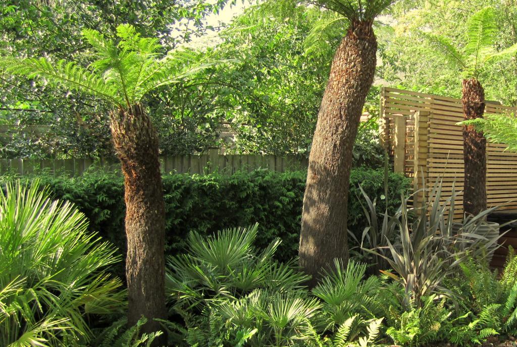Garden design exeter ⋅ garden design exmouth