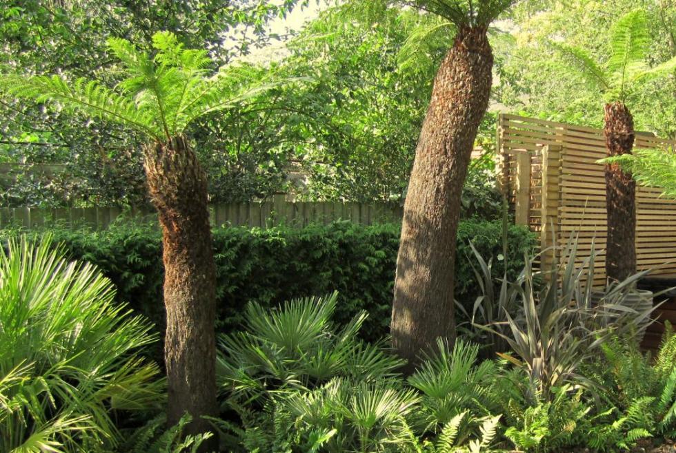 Exeter Landscapes Garden Design Exeter ⋅ Garden Design ...