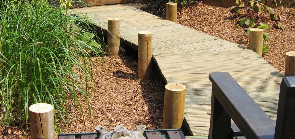 Garden-design-exeter-2