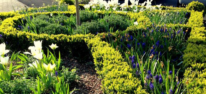 landscaper gardener exeter